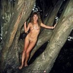 Retro photo of nude woman in big tree