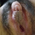 Huge Thick Clitoris Meaty Labia Up-Close