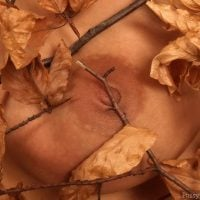 autumn-breast-leafs