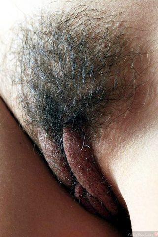 thick-labia-hairy-vulva-up-close