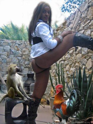 Monkey Admiring her Black Ass