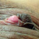 Clitoris To Study Up-Close