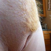 Close-Up Vulva Shaved Labia Blonde Pubes
