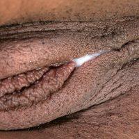 Creampie Brown Vulva Close-Up
