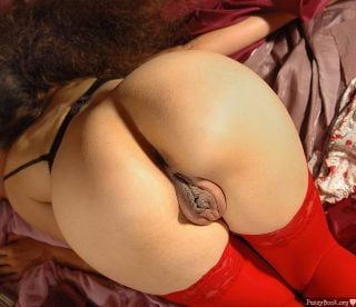 biggest-meaty-pussy-lips-wit-ass-red-stockings