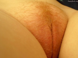blonde-hairy-pussy-up-close