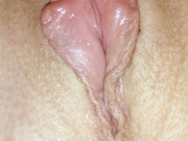 blooming-sweet-labia-close-up