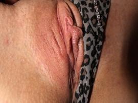 exposed-labia-sliding-panties