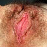 Flawless Hairy Wet Pink Vagina Close-Up