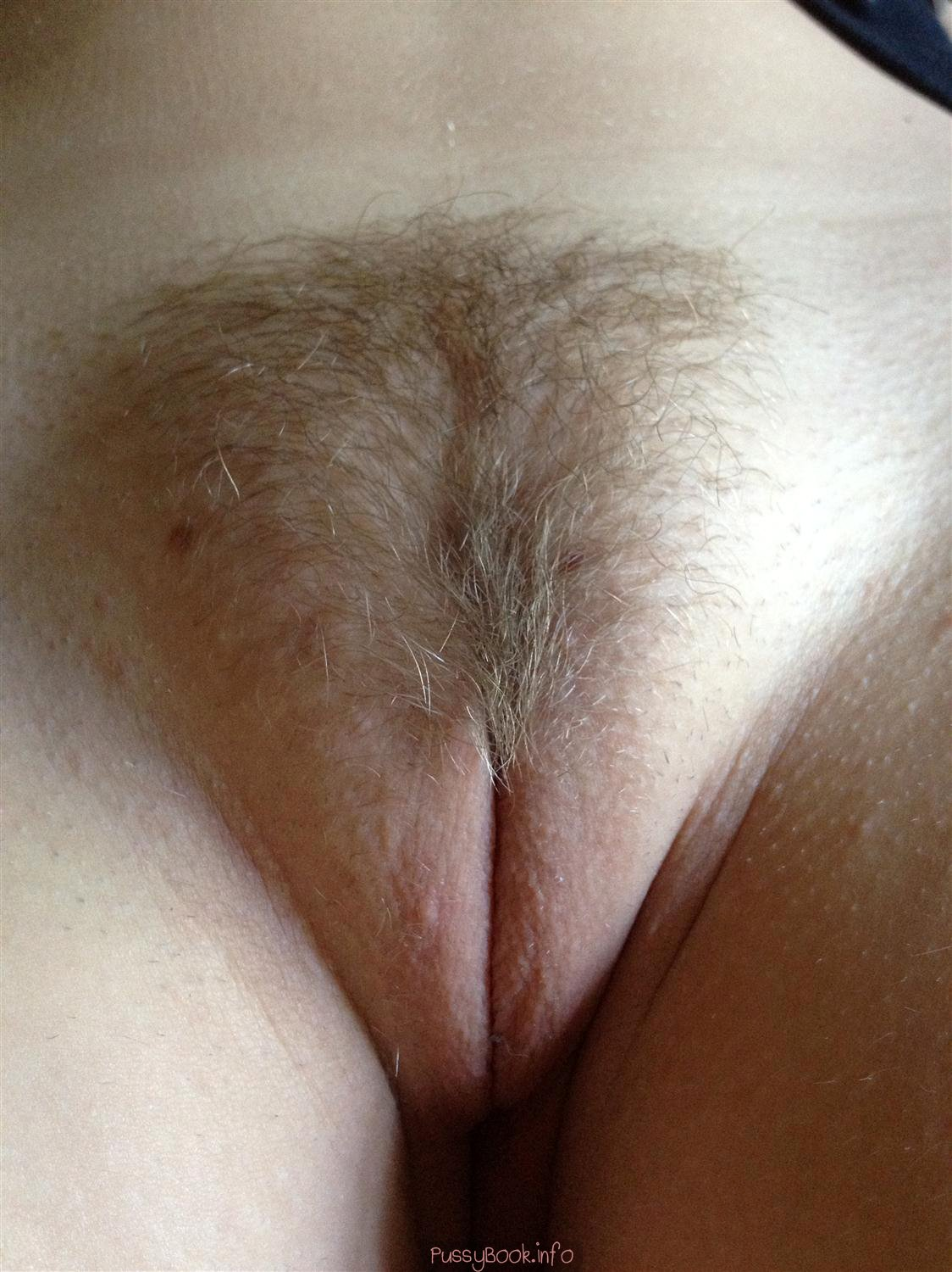 My gf hairy pussy i love it when she did not shave for a while