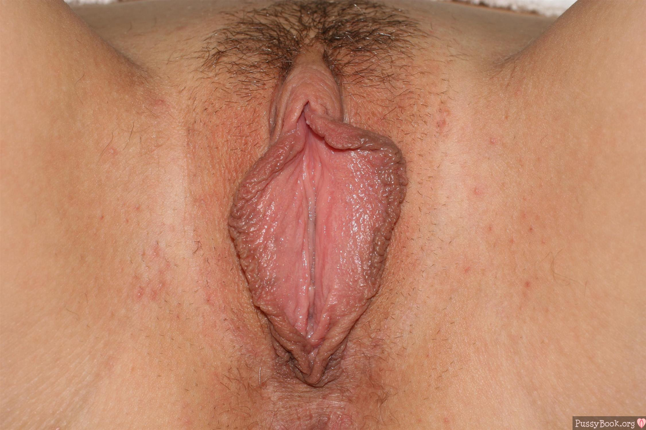 Pussy lips naked up close agree with