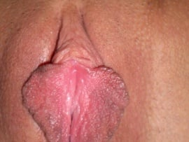 pink-long-inner-labia-close-up