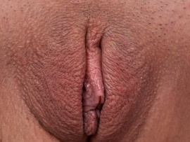 round-shaved-pussy