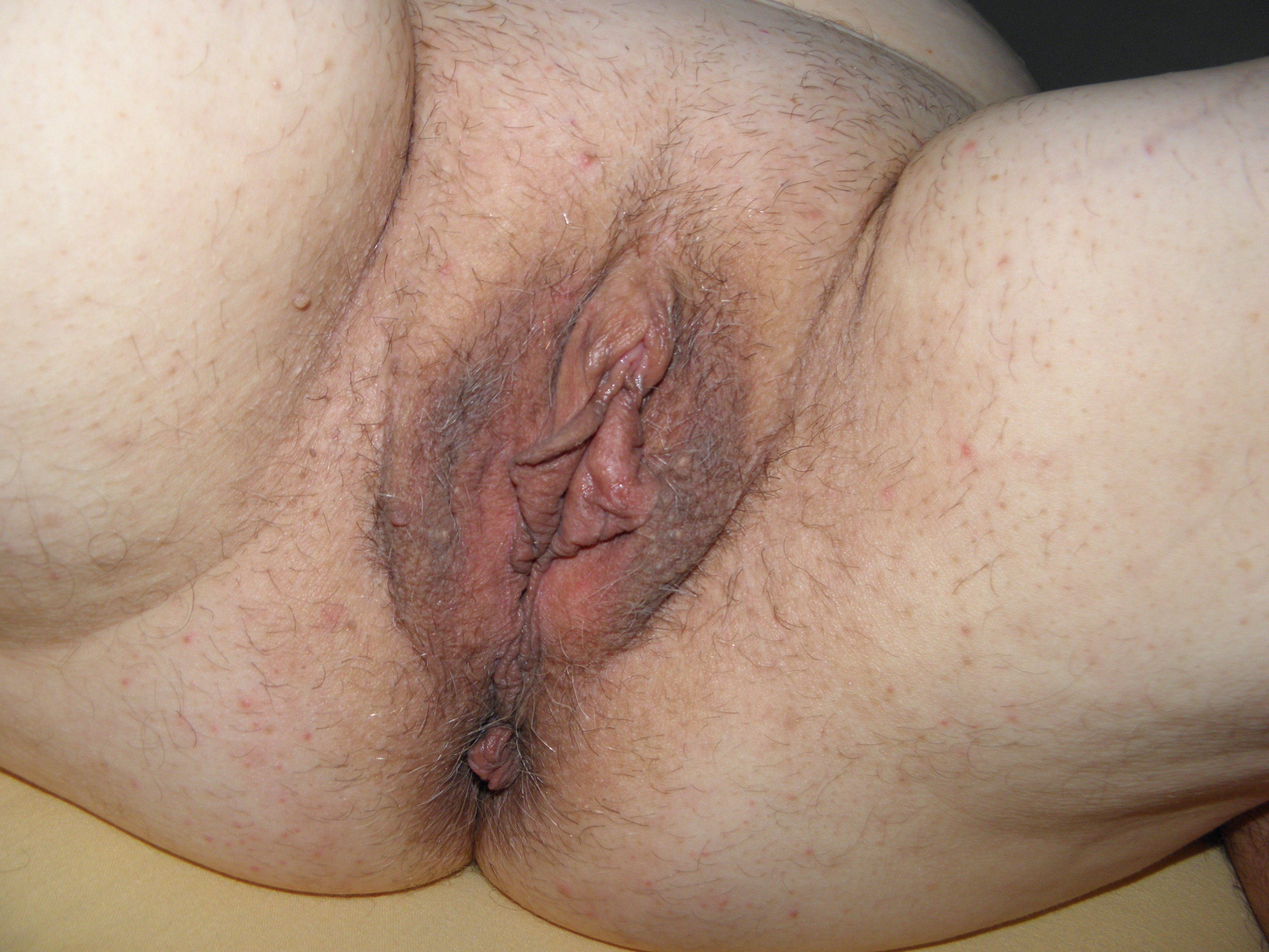 Trimmed Fat Meaty Vagina  Pussy Pictures - Asses - Boobs -5599