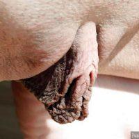very-long-big-inner-labia-close-up