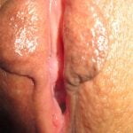 wet vagina meat